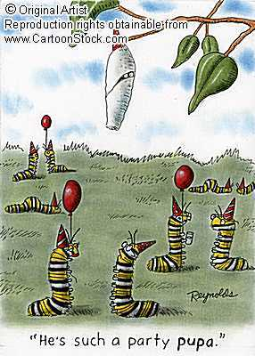 spirit surfers » blog archive » happy unlicensed 'the far side, Birthday card